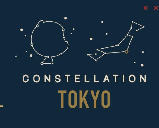 GitHub Constellation Meetup